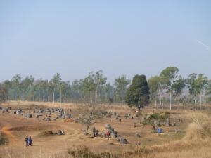 Plain of Jars
