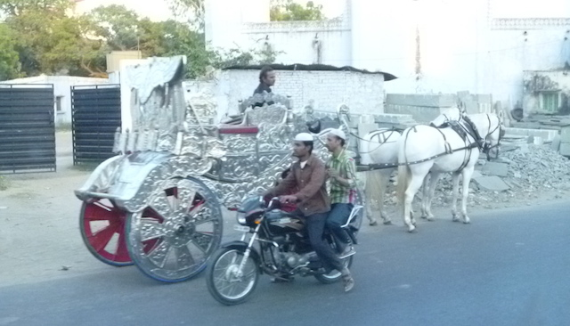 Horses and a silver wedding carriage