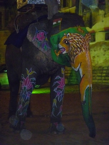 Painted elephant from a night time wedding procession