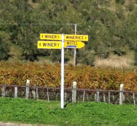 Wineries in all directions