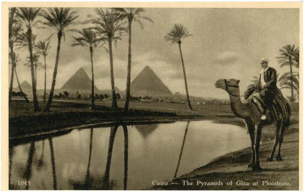 Cairo - The Pyramids of Giza at Floodtime