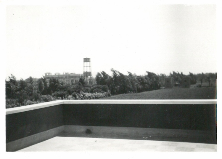 Looking towards Mena House from Sports Club - July 21 1941