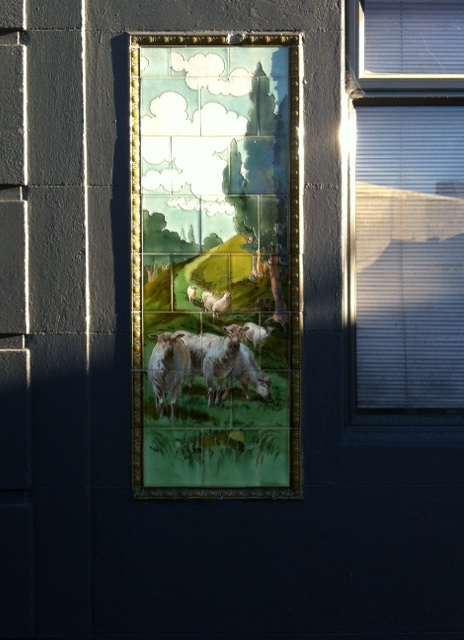 These cool tiles are outside a building off Stafford St, the sheep on one side of the doorway and the cows on the other