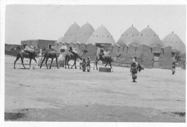 Syria - Camel caravan arriving at beehive village