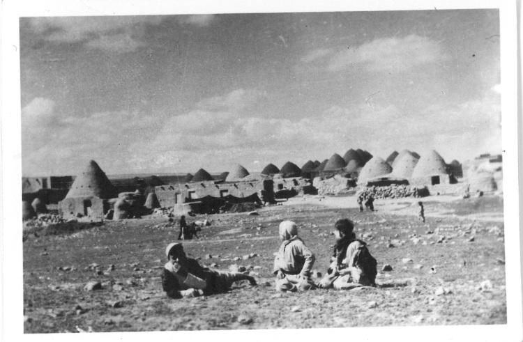 Syria - Native Beehive Village