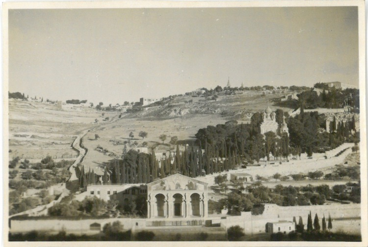 Looking towards Mount of Olives - Garden of Gethesmane - Church of All Nations - Jerusalem