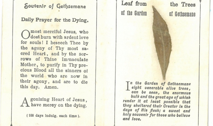 Souvenir of Gethsemane