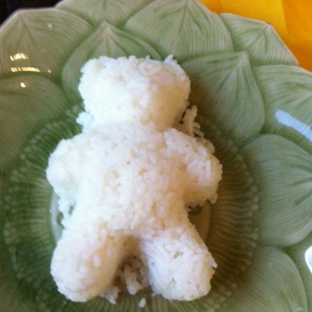 Teddy Bear Rice