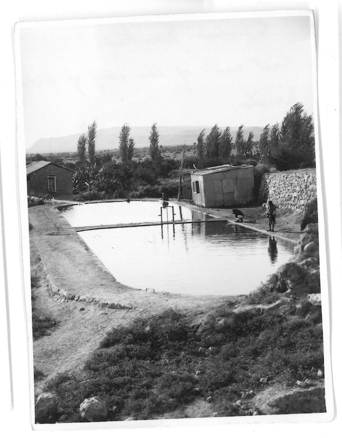 Elisha's Fountain - Last well of the city of Old Jericho - Jordan Valley - Palestine