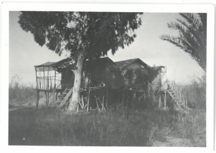House build on sticks on shore of Jordan River - Palestine