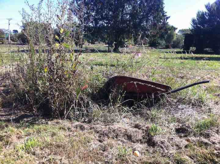 A left behind wheelbarrow