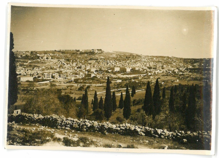 General View of Nazareth showing a few of the popular trees - Nazareth