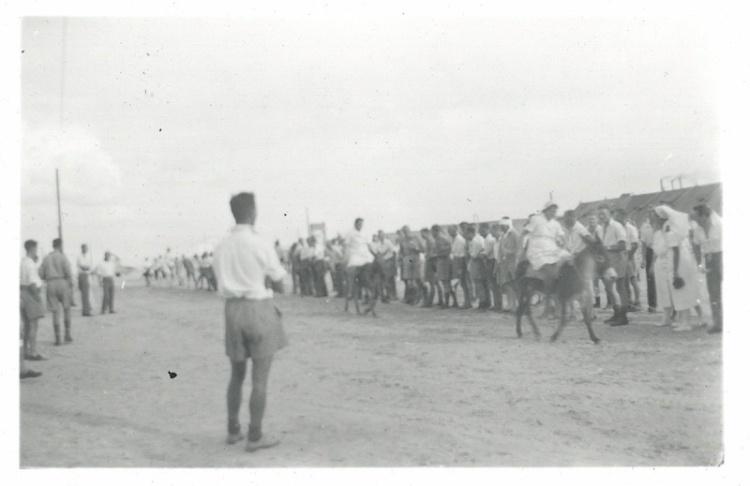Donkey Derby - El Ballah