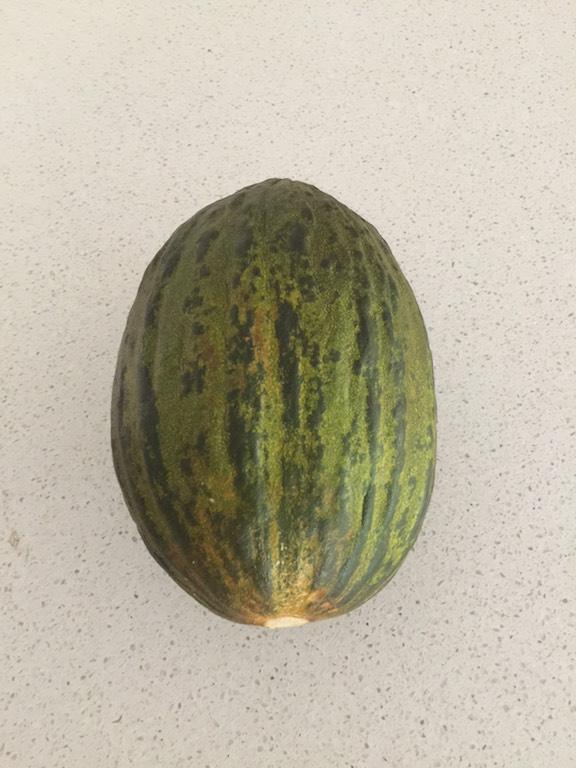 exotic-melon